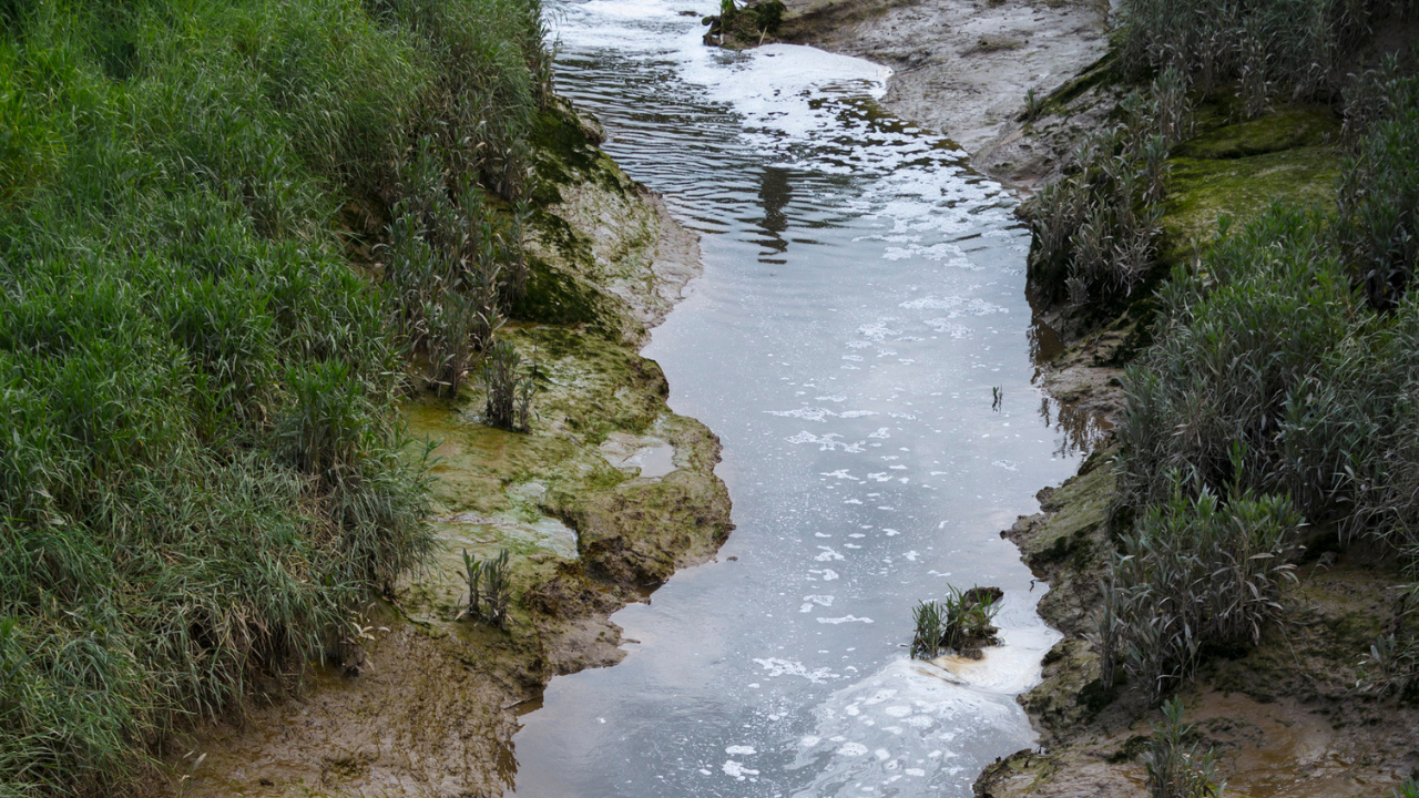 Stream Discharge Monitoring