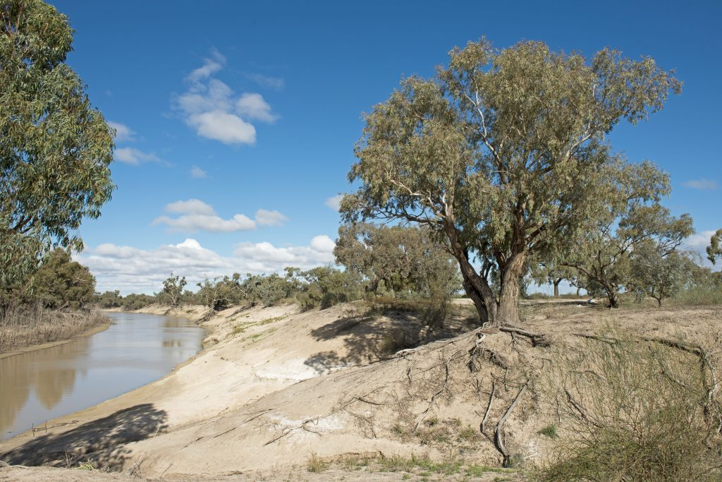 The Darling river in the far west of New South Wales.The third longest river in Australia.