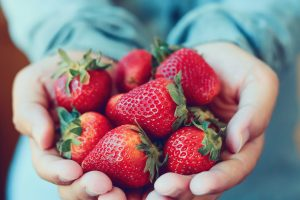 Someone holding fresh strawberries in their cupped hands.