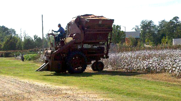 Photo of Dr. Delaney riding a cotton picker