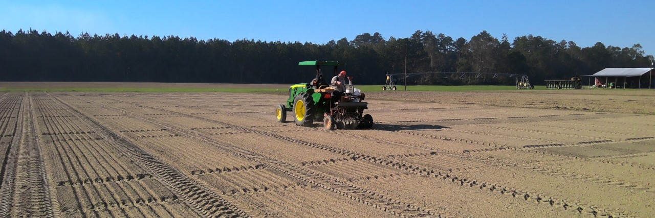 Planting Small Grains at Brewton 11-2020