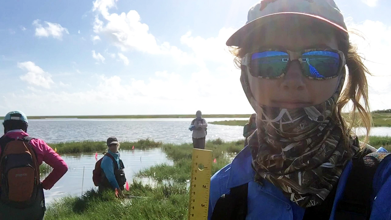 Dunning-Outreach-with-other-Researchers-in-Salt-Marsh-Plots-Water-Coast