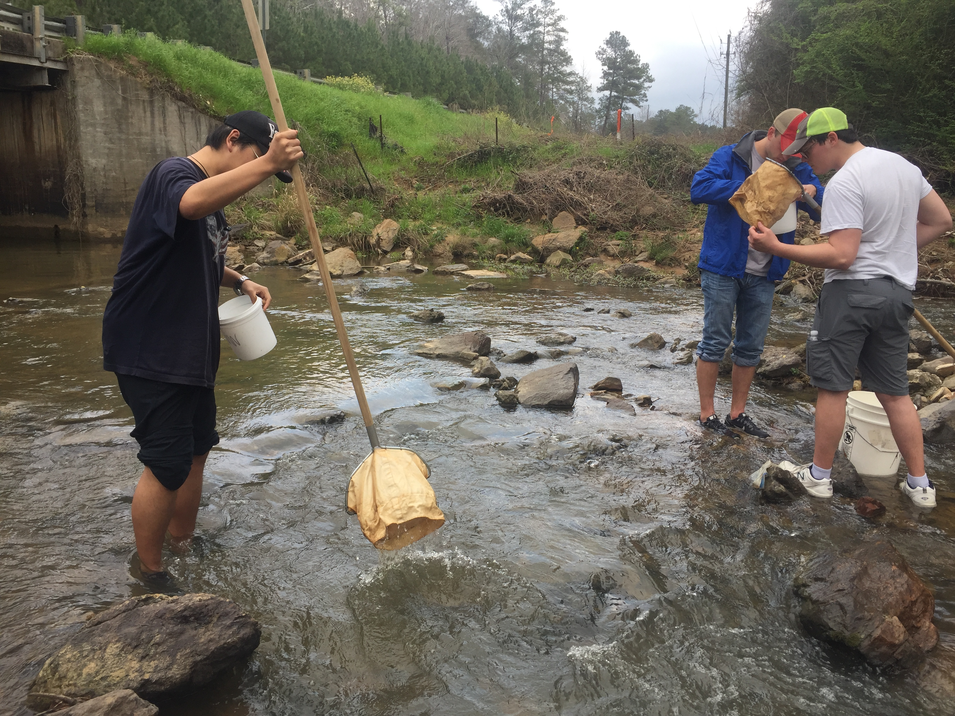 Students Conducting Steam Biomonitoring on Parkerson Mill Creek
