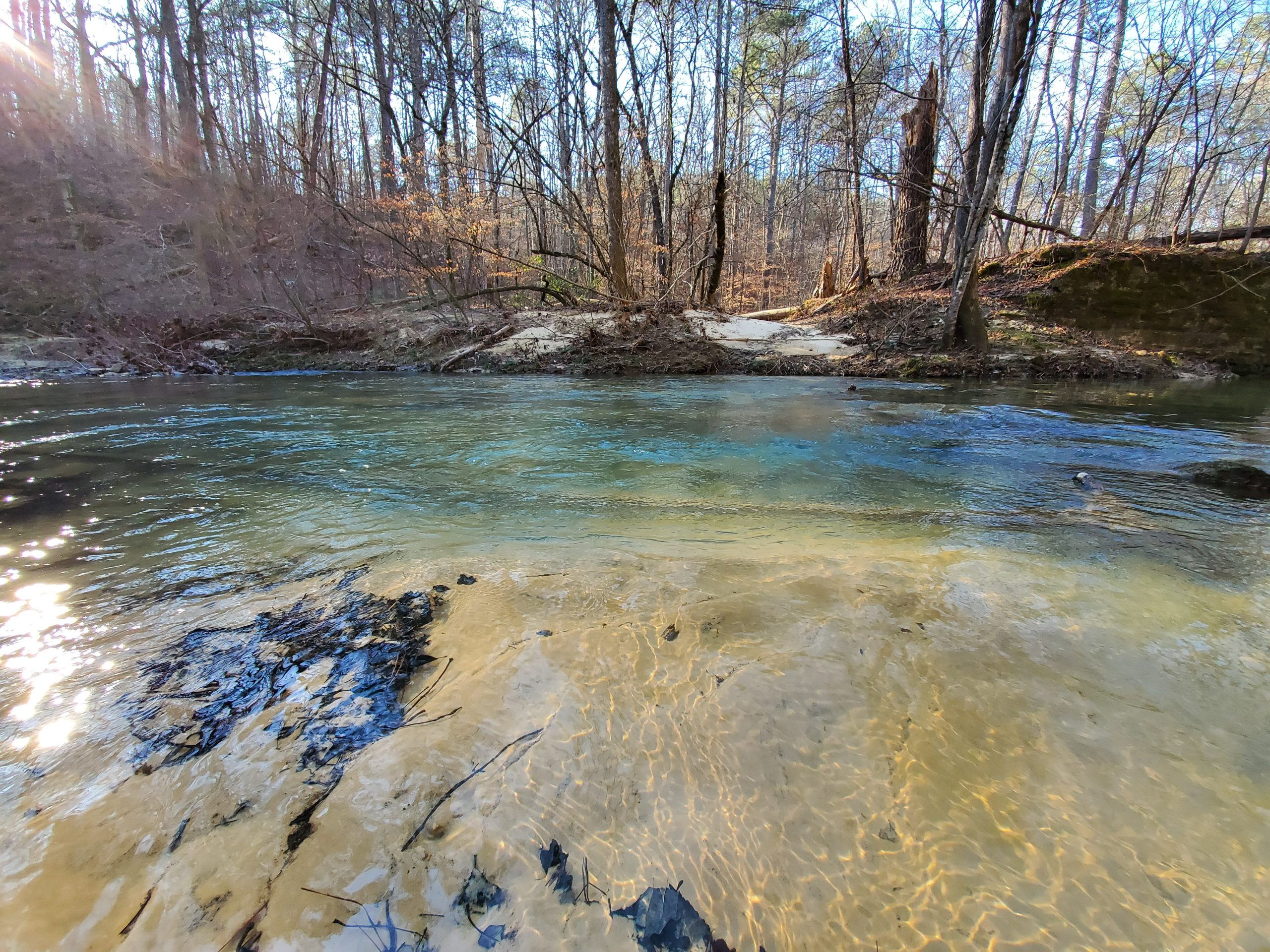 Bankhead National Forest Monitoring Site